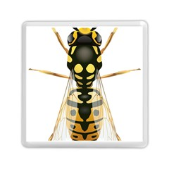 Wasp Memory Card Reader (square)