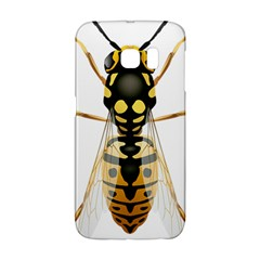 Wasp Galaxy S6 Edge