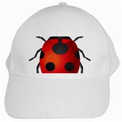 Ladybug Insects White Cap