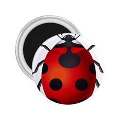 Ladybug Insects 2 25  Magnets