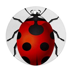 Ladybug Insects Ornament (round)