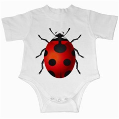 Ladybug Insects Infant Creepers