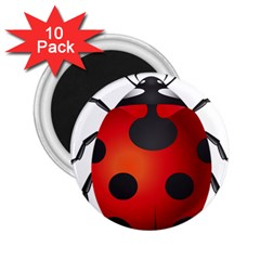 Ladybug Insects 2 25  Magnets (10 Pack)
