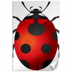 Ladybug Insects Canvas 24  X 36