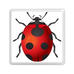 Ladybug Insects Memory Card Reader (square)