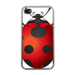 Ladybug Insects Apple Iphone 4 Case (clear)