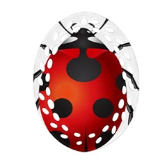 Ladybug Insects Ornament (oval Filigree)