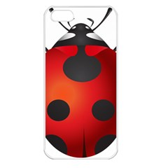 Ladybug Insects Apple Iphone 5 Seamless Case (white)