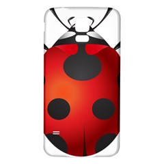 Ladybug Insects Samsung Galaxy S5 Back Case (white)