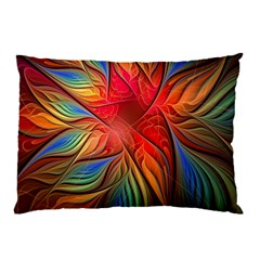 Vintage Colors Flower Petals Spiral Abstract Pillow Case (two Sides)