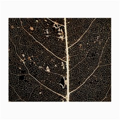 Vein Skeleton Of Leaf Small Glasses Cloth