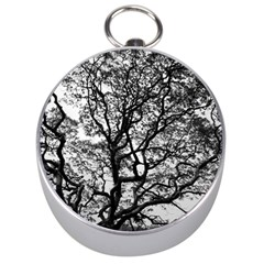 Tree Fractal Silver Compasses