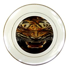 Tiger Face Porcelain Plates