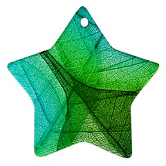 Sunlight Filtering Through Transparent Leaves Green Blue Star Ornament (two Sides)