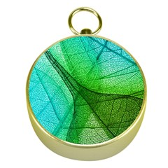 Sunlight Filtering Through Transparent Leaves Green Blue Gold Compasses