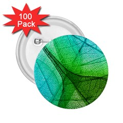 Sunlight Filtering Through Transparent Leaves Green Blue 2 25  Buttons (100 Pack)