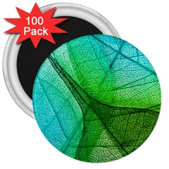 Sunlight Filtering Through Transparent Leaves Green Blue 3  Magnets (100 Pack)