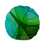 Sunlight Filtering Through Transparent Leaves Green Blue Standard 15  Premium Round Cushions Front