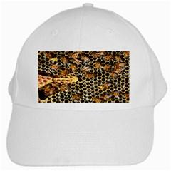 Queen Cup Honeycomb Honey Bee White Cap