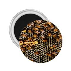 Queen Cup Honeycomb Honey Bee 2 25  Magnets