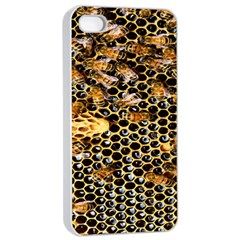 Queen Cup Honeycomb Honey Bee Apple Iphone 4/4s Seamless Case (white)