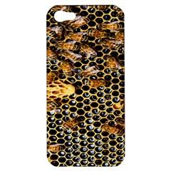 Queen Cup Honeycomb Honey Bee Apple Iphone 5 Hardshell Case
