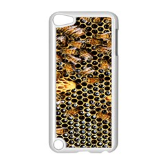 Queen Cup Honeycomb Honey Bee Apple Ipod Touch 5 Case (white)
