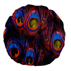 Pretty Peacock Feather Large 18  Premium Round Cushions