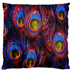 Pretty Peacock Feather Large Flano Cushion Case (two Sides)