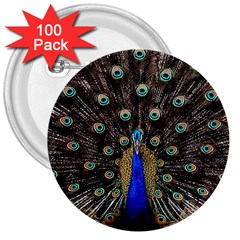 Peacock 3  Buttons (100 Pack)