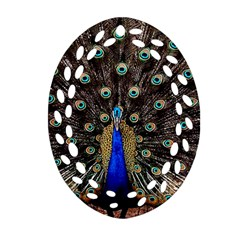 Peacock Oval Filigree Ornament (two Sides)