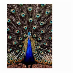 Peacock Large Garden Flag (two Sides)