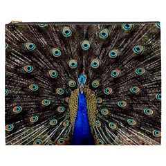 Peacock Cosmetic Bag (xxxl)