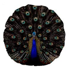 Peacock Large 18  Premium Round Cushions