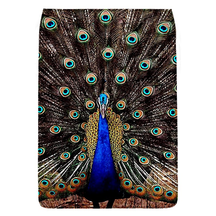 Peacock Flap Covers (S)