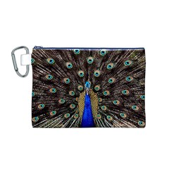 Peacock Canvas Cosmetic Bag (m)