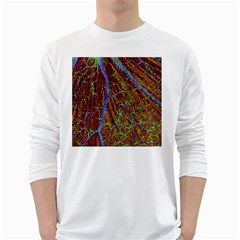 Neurobiology White Long Sleeve T Shirts