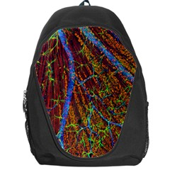 Neurobiology Backpack Bag