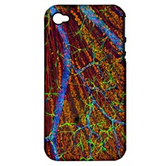 Neurobiology Apple Iphone 4/4s Hardshell Case (pc+silicone)