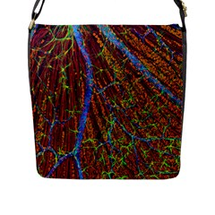Neurobiology Flap Messenger Bag (l)