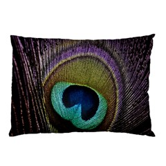 Peacock Feather Pillow Case (two Sides)