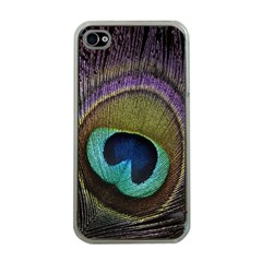 Peacock Feather Apple Iphone 4 Case (clear)