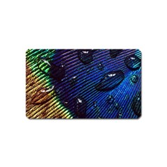 Peacock Feather Retina Mac Magnet (name Card)