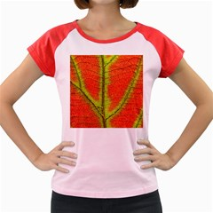 Nature Leaves Women s Cap Sleeve T Shirt