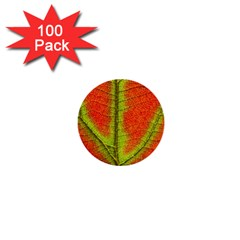 Nature Leaves 1  Mini Buttons (100 Pack)