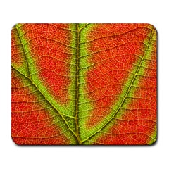 Nature Leaves Large Mousepads