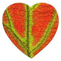 Nature Leaves Jigsaw Puzzle (heart)