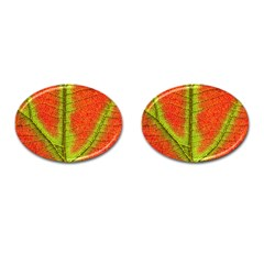 Nature Leaves Cufflinks (oval)