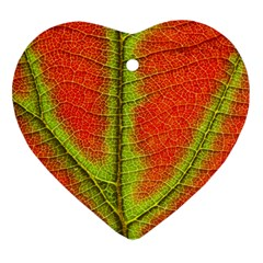 Nature Leaves Heart Ornament (two Sides)