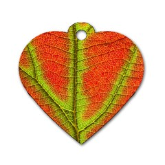 Nature Leaves Dog Tag Heart (two Sides)
